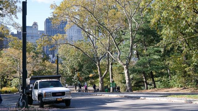 New York_Central Park